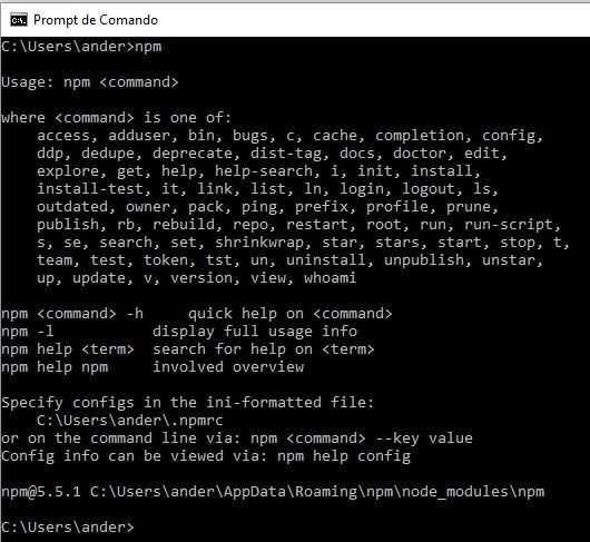NPM no Visual Studio