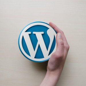 Curso Intensivo de WordPress 2019