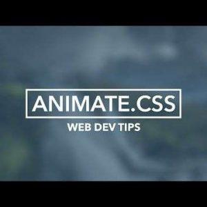 Como criar um efeito hover com animate.css