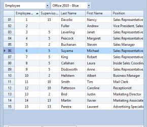 Como remover os minutos de um campo DATE no DataGridView (C#)
