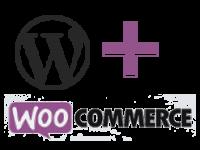 Curso Intensivo de WordPress com WooCommerce para criação de lojas virtuais